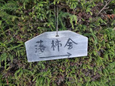 akino saga-15