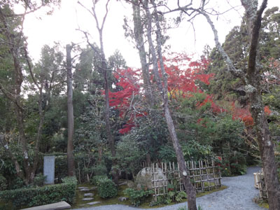 akino saga-26
