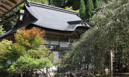 9月の常照皇寺 美しい庭と書院造り